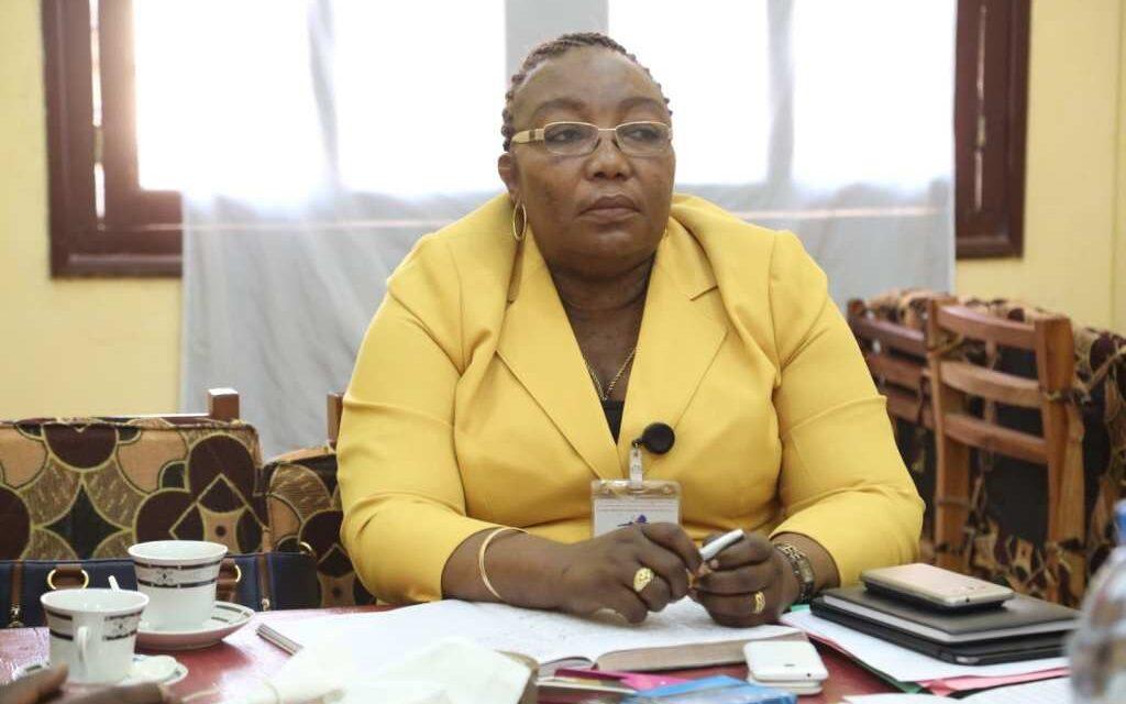 CENTRAFRIQUE: UNE PLATEFORME DENONCE L'EXCLUSION DE LA DIASPORA AU VOTE