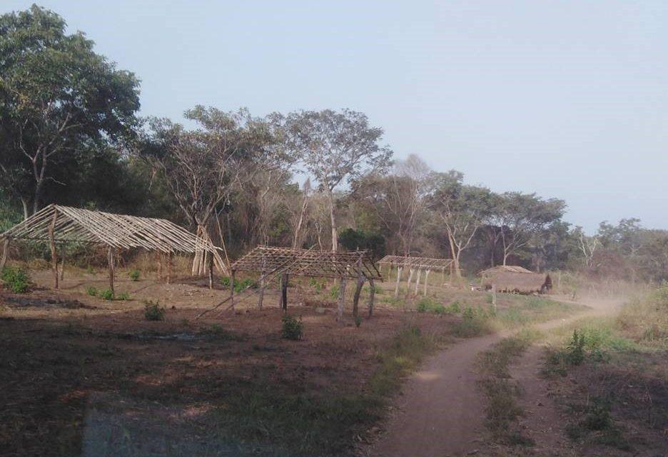 Centrafrique : La flambée des violences a contraint plus de 55.000 personnes à fuir