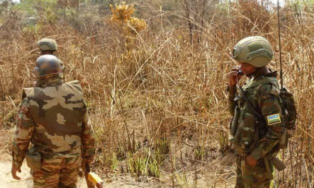 Les forces spéciales rwandaises appréciées en milieu militaire centrafricain