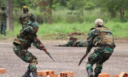 La Centrafrique désormais en Etat d'urgence sécuritaire