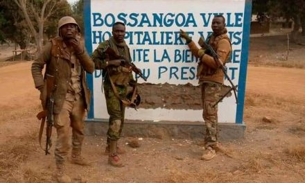 Centrafrique : L'armée marche sur Bossangoa