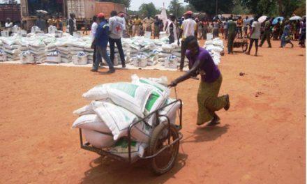 Le CICR distribue des produits alimentaires aux victimes de Grimari