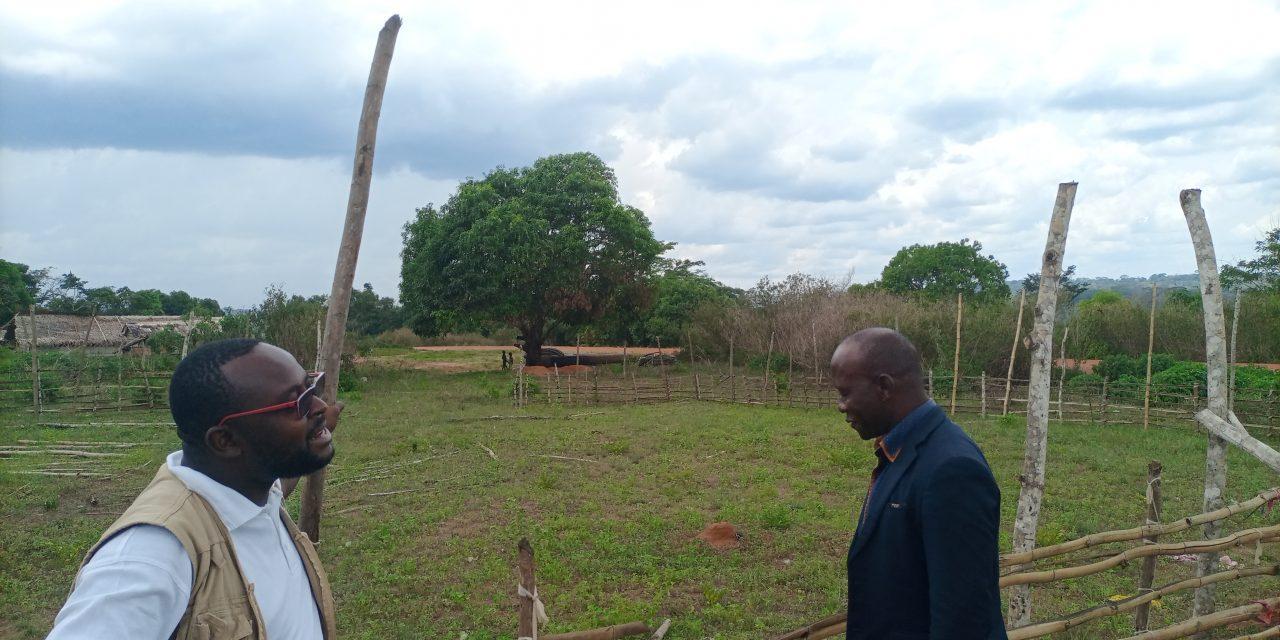 Centrafrique : 12 sites techniques de la fibre optique à construire dans le pays