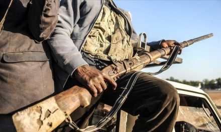 Centrafrique: Double attaques vers Mboki contre des convois humanitaires