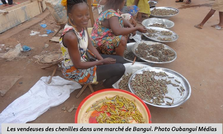 Centrafrique: Bangui accueille les marchés des chenilles