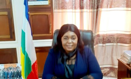 Centrafrique: « Nous voulons faire du tourisme de proximité une source de l'économique »,  a déclaré le ministre des Arts et du Tourisme