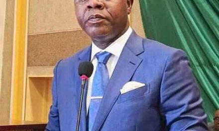 Centrafrique : L'assemblée nationale approuve la politique générale du gouvernement