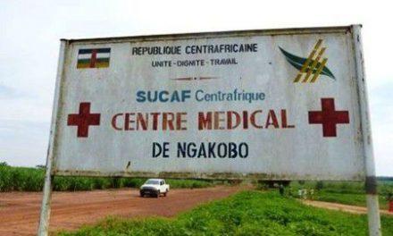 Groupe Castel visé dans le rapport de l'ONG The Sentry pour  financement des rebelles en Centrafrique