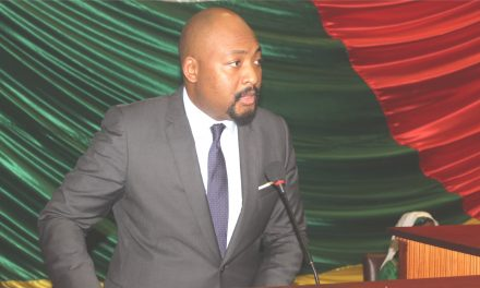 Centrafrique : Les députés valident la suppression de six établissements publics